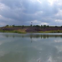 Teich 2
